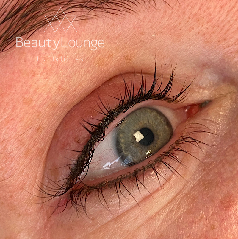 permanente make-up eyeliner haarlem manon wolbink pmu